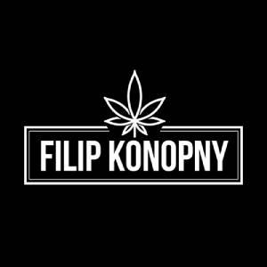 Kwiaty CBD - Filip Konopny