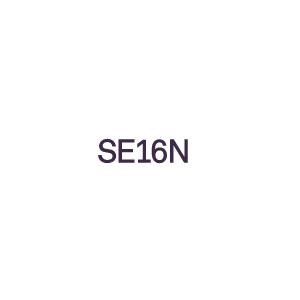 Optymalizowanie cyfryzacji w biznesie - SE16N